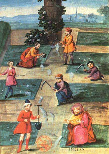 Fig5 Of Abraham The Jew Manuscript The Workers In The Garden
