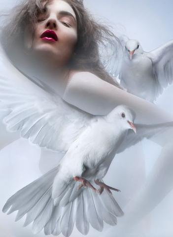 Girl And Doves