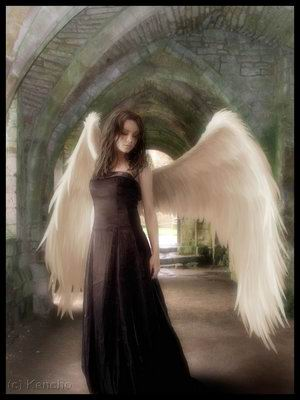 Heaven Of Mysterious Angel