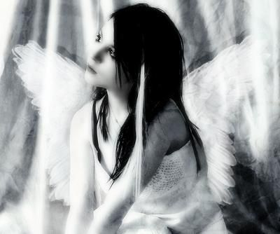 Young Angel With Wings, Angels 5