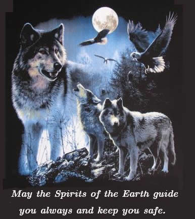 Wiccan Spirits