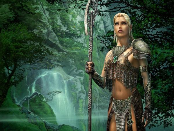Elf Fighter In The Wood
