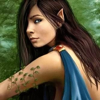 Elven Warrior