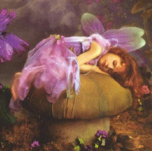 Sleaping Fairy