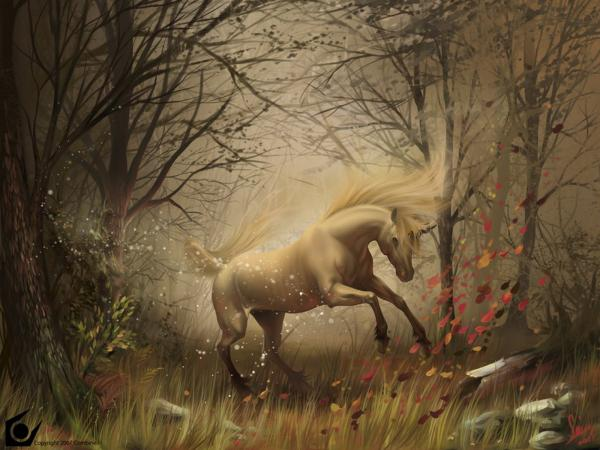 Dance Of The Horse, Magical Landscapes 2