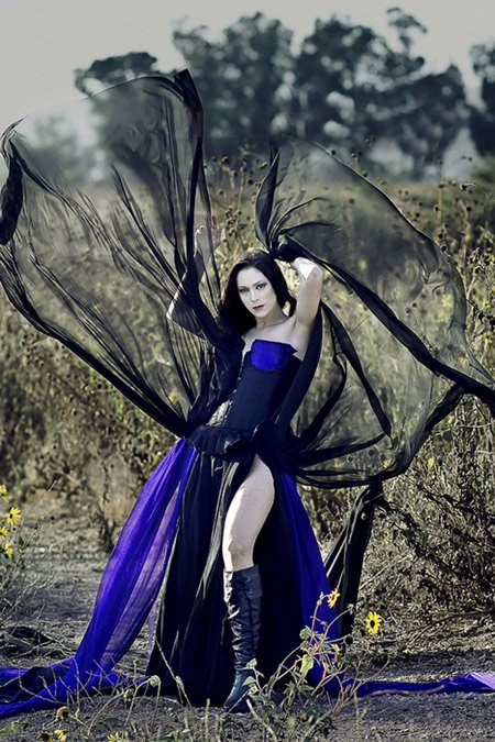 Dark Wings And Beauty
