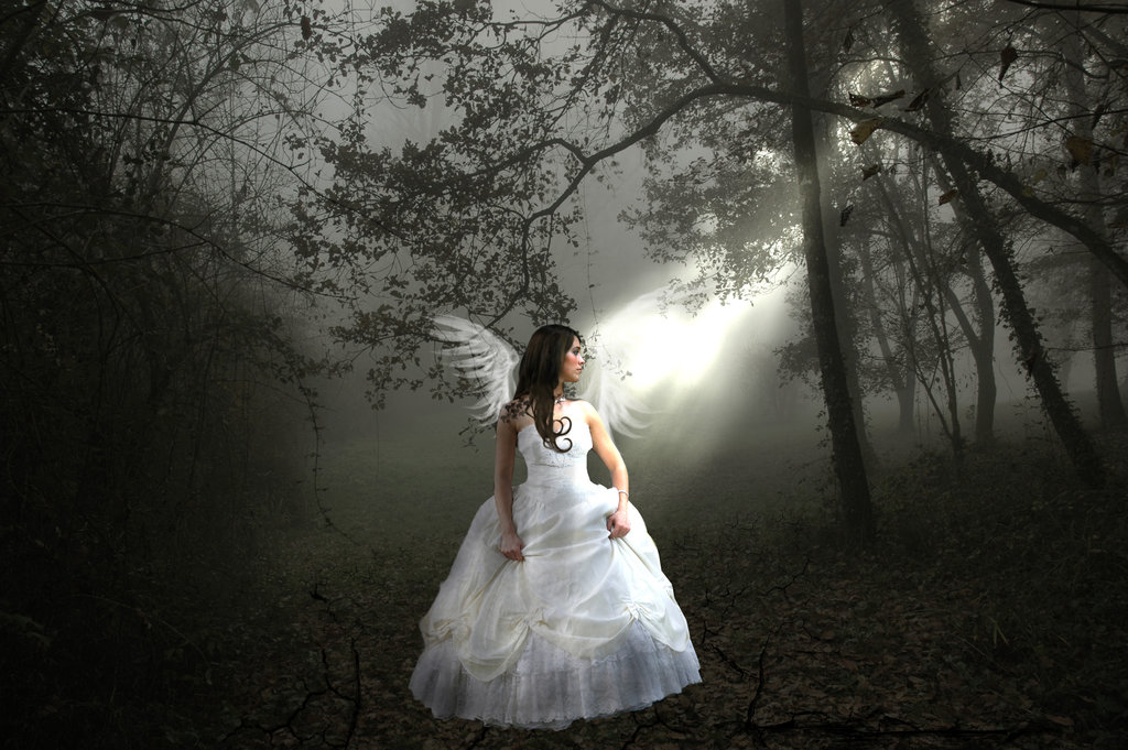 Girl Angel In The Dress Of Bride