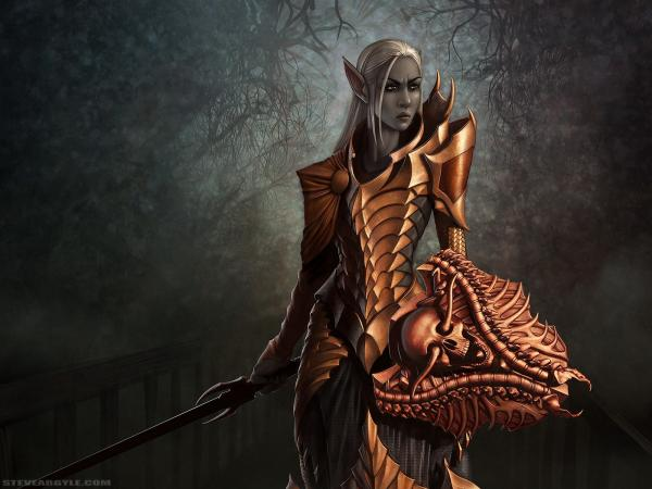 Dark Elf Girl Warrior