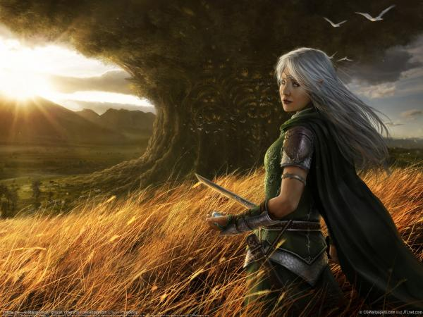 Elven Warrior Girl Near The Black Oak