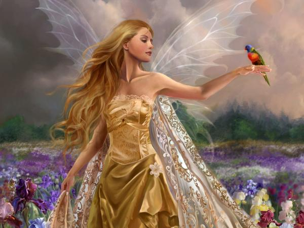 Fairy In The Field With A Bird