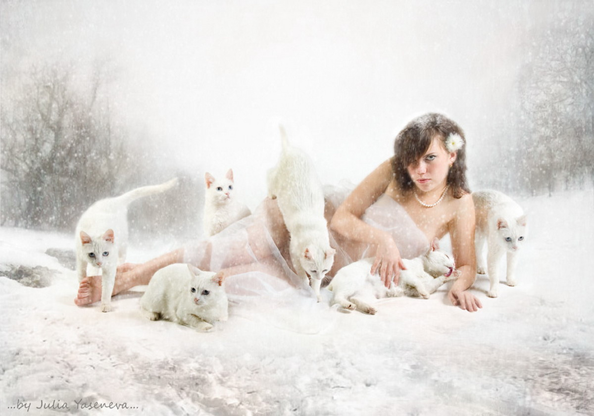 Girl Of White Cats